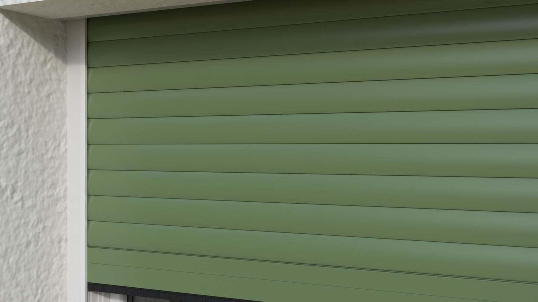 G31 verde felce